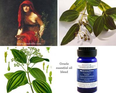 Scentcillo Oracle essential oil blend - mystical and meditative