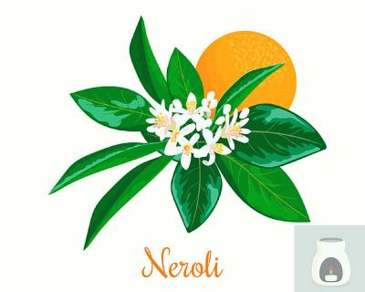 Neroli flowers and essential oil burner