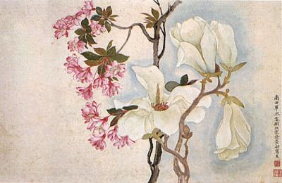 Yun Shouping, Magnolias