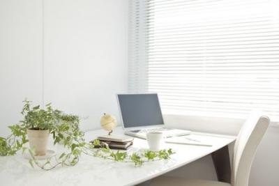 computer on desk with pot plant