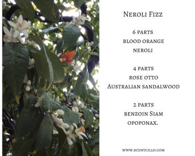 Neroli Fizz essential oil blend