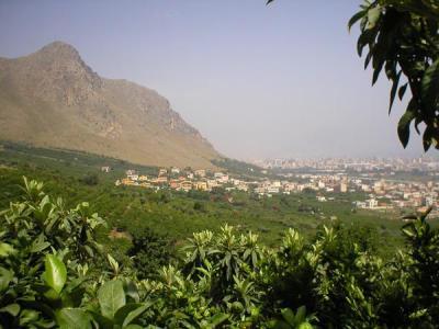 Ciaculli e Monte Grifone