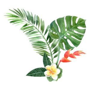 Summer foliage and frangipani watercolour