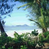 Palm Cove Queensland